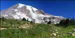 Stitched shot of Mt. Rainier from the Panorama Point trail (1)