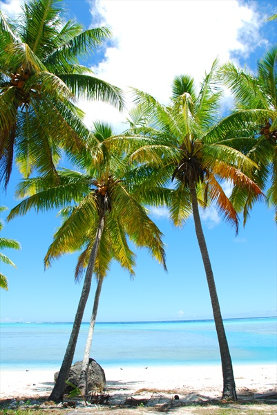 cook islands how to get there