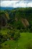 Green @ Ngarai Sianok