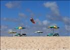 Sombrillas / Beach umbrellas