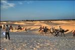 Carovana nel deserto (Sahara)