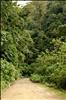 Manu National Park-11