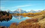 Grand Teton National Park,near Jackson Lake Lodge