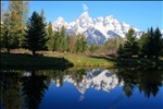Grand Tetons reflected in a pond near Schwabacher Landng