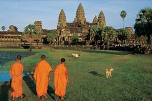 monks walking in the temple grounds