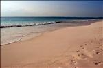 Pink Sands Beach , Harbour Island