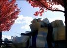Guggenheim udazkenean