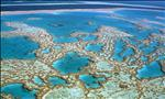 the beautiful great barrier reef