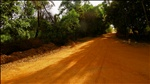 way ahead  - Light and shaddow