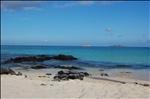 Galapagos, Santa Cruz 111