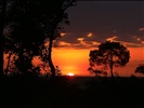 African Sunrise !