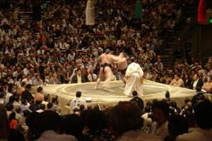 packed house at the sumo