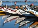Del Ria boats 31