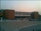 New Airport 2