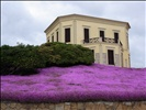 Alghero, house with nice flowers