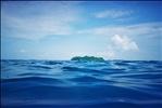 Snorkelling off Sipadan Island