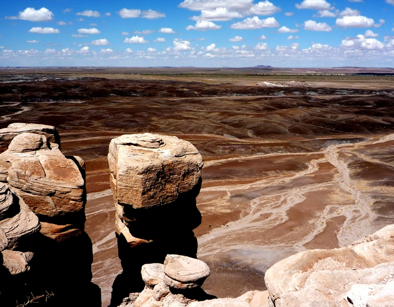 petrified forest natl pk guys Petrified forest national park | 47/59 february 11, 2017 by madison 5 comments this park is a hidden gem trees turn into magical rocks here in petrified forest i mean, come on i'll get.