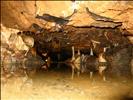 Gough's cave w/flash