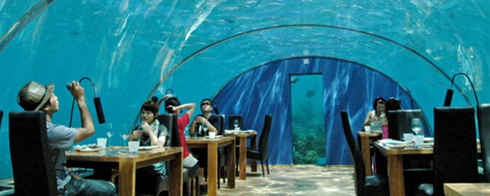 Ithaa hilton restaurant maldives for Ithaa prices