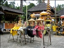Offerings at Gunung Kawi Temple outside Ubud in Bali