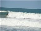 Surf Praia do Rosa