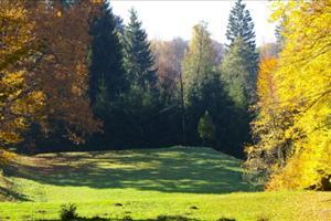 romanian park view
