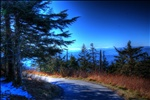 Azure on Clingman's Dome