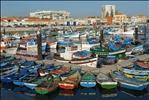 Fishing harbour in Setubal