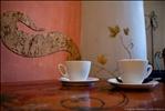 Quo Vadis Café, Cluj Napoca