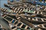 Fishing River Boats