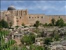 Palestine_Jerusalem_Geopoint_Right_of_Return_NK24203