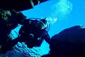 tectonic plate diving