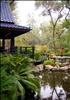 Japanese Garden at Descanso, L.A.