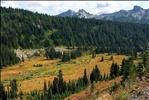 USA 2005 (September 14th) Washington, Mt. Rainier National Park