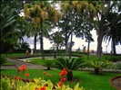 The Presidential Gardens in Funchal, Madeira, Portugal in 2009! Simply beautiful!