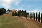 Casolare (Montalcino - Toscana)