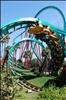 Kumba - Busch Gardens