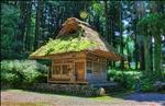 Moss covered shrine