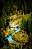 Yosemite : river winds
