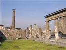 Pompeii, Sorrento, Naples 010