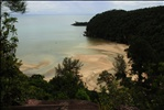 Kuching Trip - Bako National Park