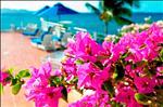 _DSC0900_edited-1.jpg
