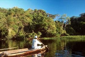 Kayaking the pantanal
