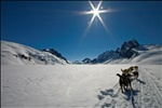 Sledding on a Glacier