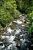 Manu National Park-13