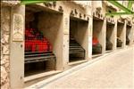 www.viajar24h.com -50