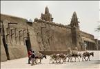 Timbuktu preferred method of transport, Mali, W. Africa