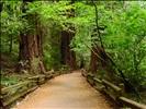 comfortable trail || komfortabler Wanderweg