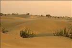 Thar Desert IV.