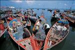 bustling boat market